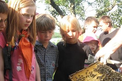 Wölflinge (6-10 Jahre)